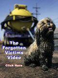 Forgotten Victims Video